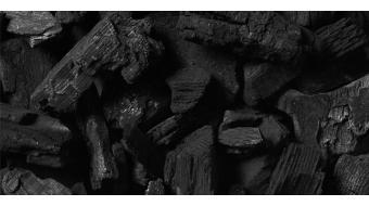 Actieve houtskool: waarom dit ingrediënt een must is voor de vette huid